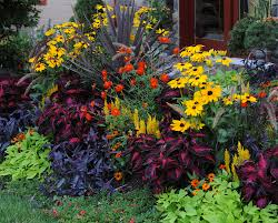 tips fall landscaping ideas fall landscaping ideas pictures