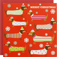dachshund christmas wrapping paper festive dachshunds luxury christmas cards pack of 8 christmas