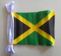 Tasmania Flag Jamaica Flag Bunting Polyester Custom Flags Australia