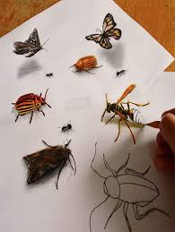 unbelievable 3d pencil drawings holy kaw