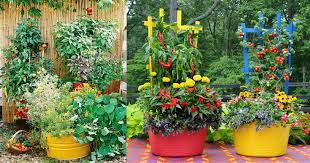 container vegetable gardening ideas u2013 home design and decorating