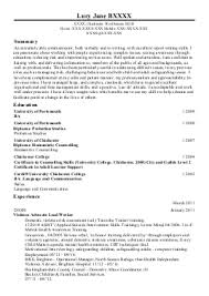 Health Informatics Resume Help With Esl Creative Essay On Pokemon Go College Essay Editor