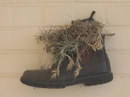 womens boots like blundstone from hay bales to how blundstone boots became a cult