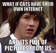 Internet Meme Generator - meme generator erstelle dein eigenes meme