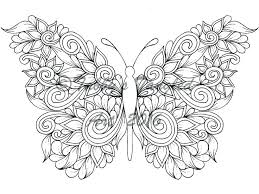 coloring butterfly creative beautiful butterfly designs