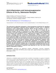 anti inflammatory and immunosuppressive effects of the a 2a