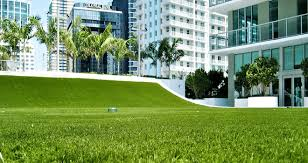 Fake Grass For Patio Artificial Grass San Diego Fake Turf San Diego Turf Solutions
