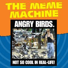 The Meme Machine Susan Blackmore - the meme machine best machine 2018