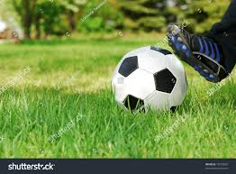 youth kicks soccer ball backyard grass stock photo 13272892