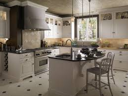 Kitchen Cabinets In Houston Refinish Kitchen Cabinets Cost Modern Cabinets