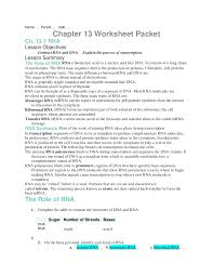 dna rna proteins starts with worksheet answers free worksheets