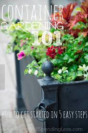 home and garden design show san jose best 25 container vegetable gardening ideas on pinterest
