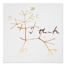 darwin i think tree of poster zazzle com