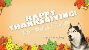 Supercuts Thanksgiving Hours A Very Mishka Thanksgiving Mishka The Talking Husky Disney Video