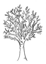 sketches of a tree 1000 images about sketch on pinterest tree