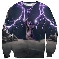 cat sweater lightning cat sweater shelfies