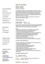 Resume Layout Sample by Resume Layout Sample Cv Resume Format Resume Layout Examples