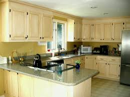 kitchen cabinets painting ideas painted kitchen cabinet ideas freshome kitchen styles cabinet