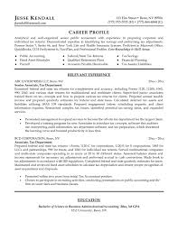 Career Profile Resume Examples Cv Example Professional Profile