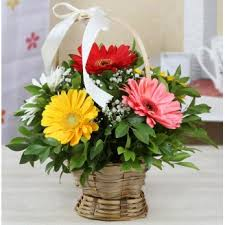 Flowers Com Send Online Flowers And Cake On Mothers Day Same Day Midnight To Mom