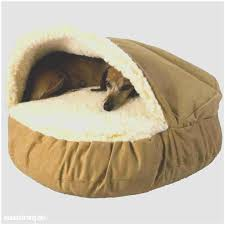 Hooded Dog Bed Pet Cave Large Uk The Best Cave