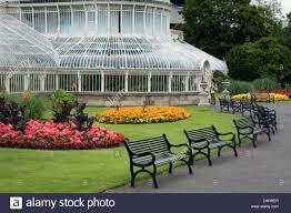palm house botanical gardens belfast northern ireland united