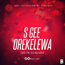 Drake Wildfire Instrumental Mp3 Download by S Gee U2013 Orekelewa Taste The Feeling Cover Notjustok