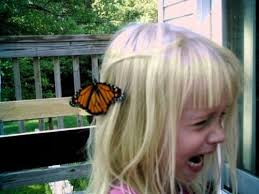 Little White Girl Meme - you appreciate that butterfly on your head you little bitch vintage