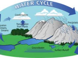 the water cycle precipitation education