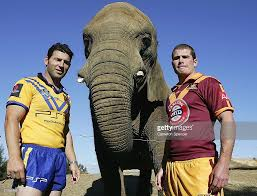 nrl city v country captains photocall photos and images getty