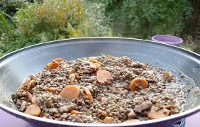 cuisiner les lentilles vertes un classique lentilles carottes lardons quand est ce qu on mange
