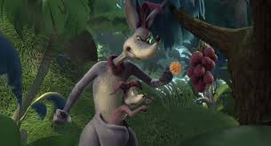 horton hears a who kangaroo google search kangaroos