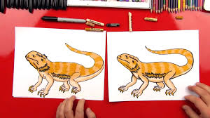 how to draw thanksgiving how to draw a bearded dragon art for kids hub
