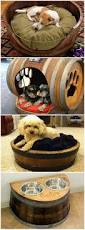 Dog Bed With Canopy Best 25 Dog Houses Ideas On Pinterest Cool Dog Houses Pet