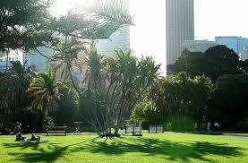 The Royal Botanic Gardens The Royal Botanic Gardens Sydney The Most Beautiful Botanical