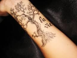 arm tree wrist brown hairs