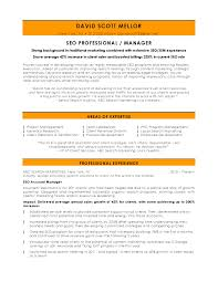 Marketing Resume Samples by Seo Profile Resume Resume For Your Job Application