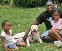 when a pet dies coping with the of your pet the humane society of the