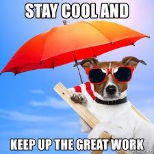 Stay Cool Meme - stay cool and keep up the great work summer dog meme generator
