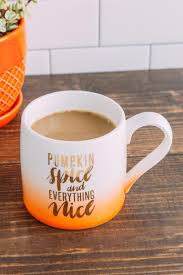 pumpkin spice and everything nice mug home u0026 gifts sale
