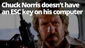 Adventures In Babysitting Meme - chuck norris facts know your meme