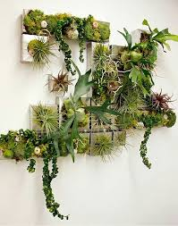 311 best vertical gardens images on pinterest plants gardening