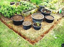 Vegetable Container Gardening Guide by Container Vegetable Gardening Ideas Container Vegetable Garden