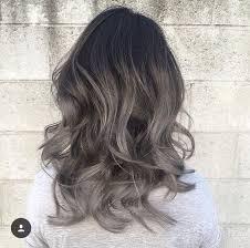 silver brown hair silver and brown hair brown hairs