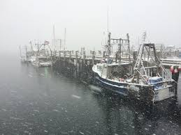 photos snow in provincetown cape cod online