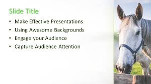free horse powerpoint template free powerpoint templates