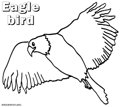 bird coloring pages coloring pages to download and print