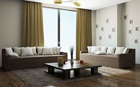 Trendy Living Room Color Schemes by Living Room Wonderful Living Room Curtain Ideas Modern With