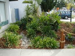 various plants for front yard garden landscaping with mulch and