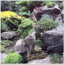 37 best alpine rock gardens images on pinterest garden ideas